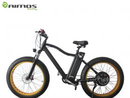 48V 500W new design hidden battery 26' easy ride electric bike for UAS market