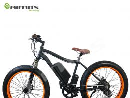 Most beautiful new model electric bicycle