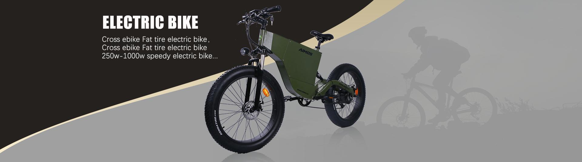 Electric bike contact fuckslut!