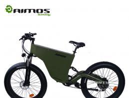 AMS-TDE-06 newest model 1000w fat tire electric bike in hot sale