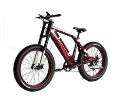 AMS-TDE-SR newest model fat tire electric bike in hot sale