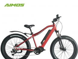 Bafang 1000w Ultra mid drive electric bike