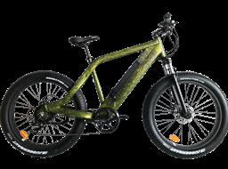 AMS-TDE-SR hidden battery double shoulder suspension fork fat electric bike