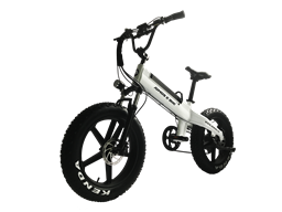 Mag wheel 20 inch 48v 350w fat tire electric bike for US market