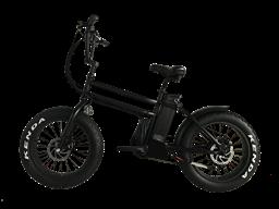 carry bags fashionable dual motor fat tire electric bike