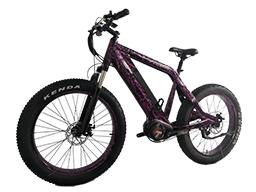 Ultra Mid drive 1000W 48V 14Ah Fat tire electric bike