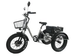 48v 750w 3 wheel folding electric bike