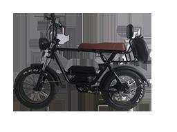 2021 Newest Model 750W/1000W Folding Fat Tire Electric Bike